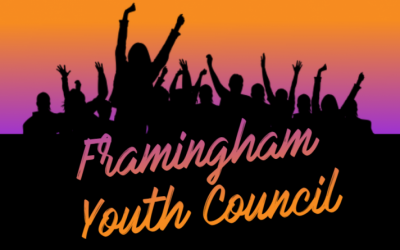 Youth Council Wants To Propose Lowering Voting Age in Framingham to 17